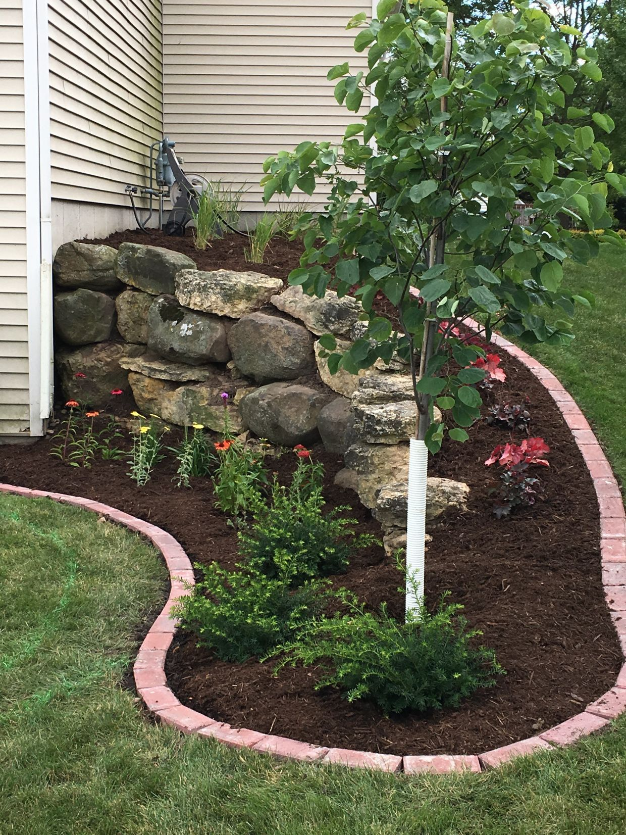 Backyard Landscaping Project Including Removing Rock Replanting Laying Mulch And Laying A Brick Landscaping With Rocks Landscape Projects Landscape Design