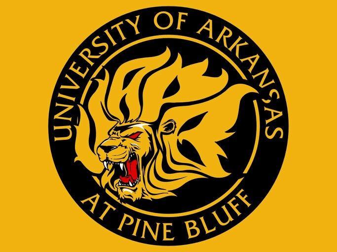 University Of Arkansas Pine Bluff Application