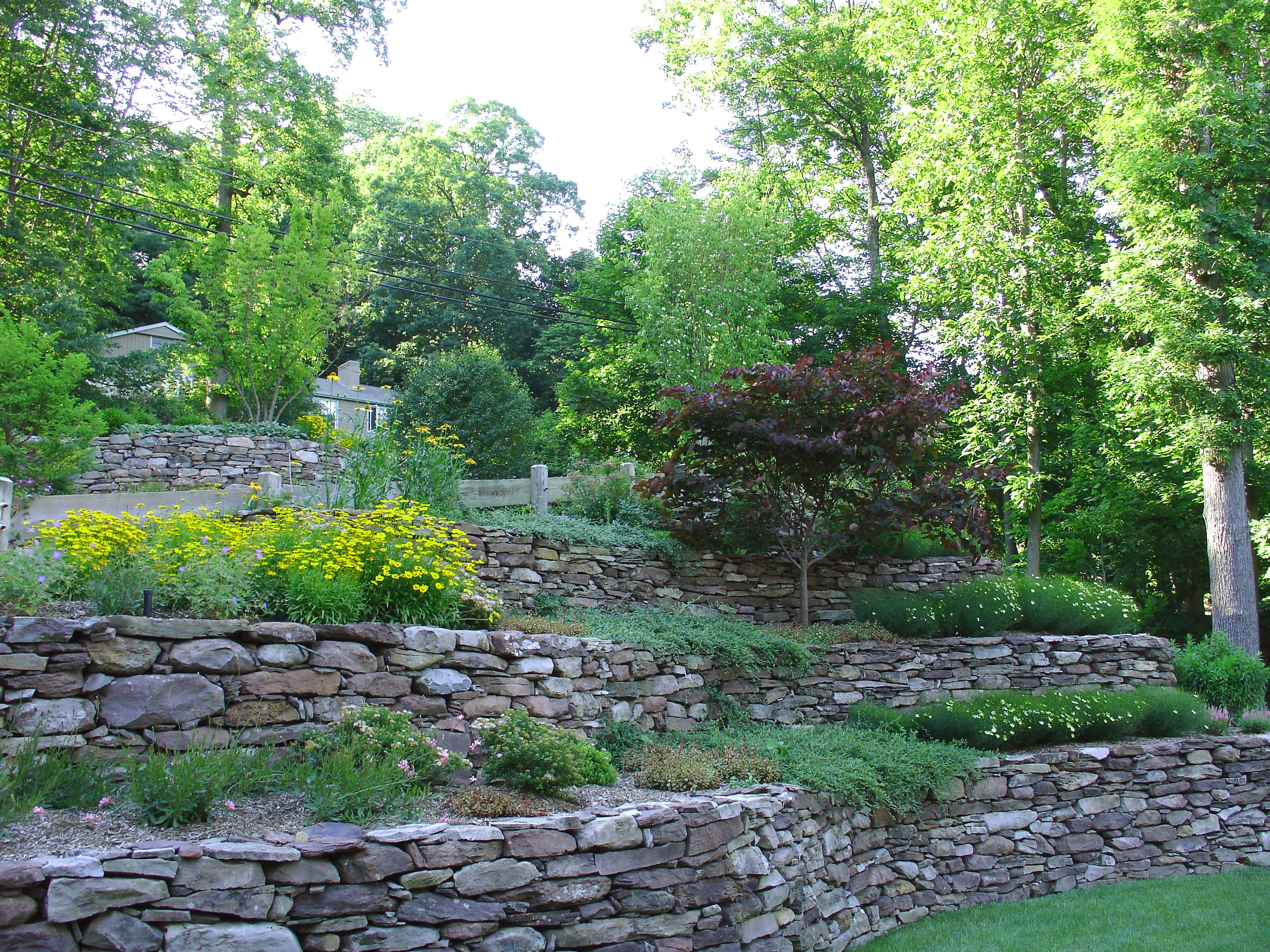 Tiered landscaping on a hill with rocks | slope ...