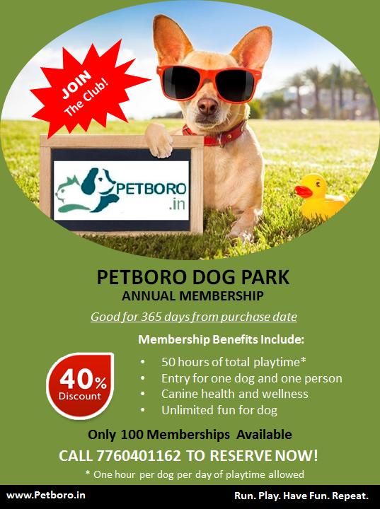 Petboro Dog Park Annual Membership Information Bengaluru India Dog Park Pet Resort Dogs