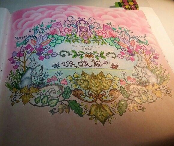 Name Page Of Enchanted Forest Johanna Basford Coloring BookColoring