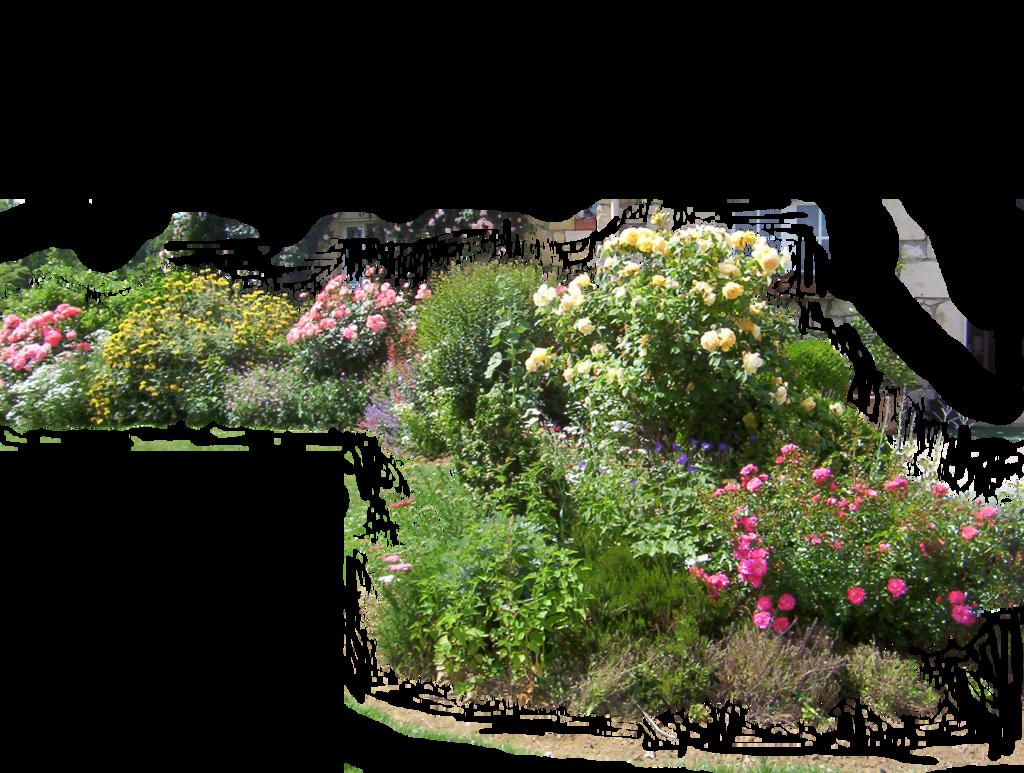 Flowered garden png 02 by HermitCrabStock on DeviantArt
