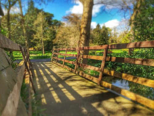 """Work less, chill more, and have better success - http://mbatemplates.com - """"Bridge in Park"""" by rkerkenb http://ift.tt/1n6QEkJ,  October 11, 2014, 7:00 pm"""