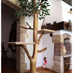 Arbre chat design en ch ne veritable arbre a chat - Griffoir chat fait maison ...