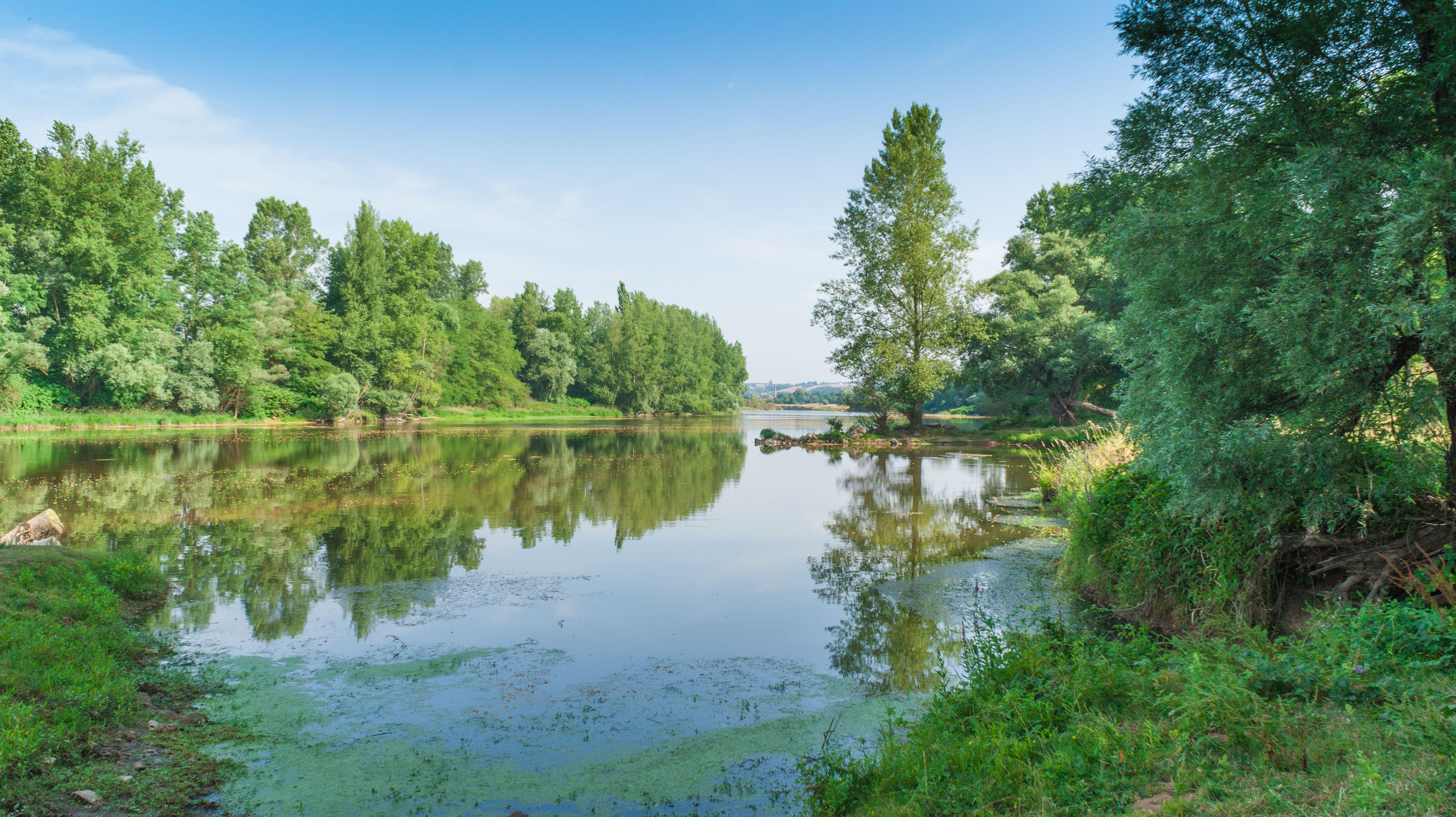 La Loire à Pouilly sous Charlieu