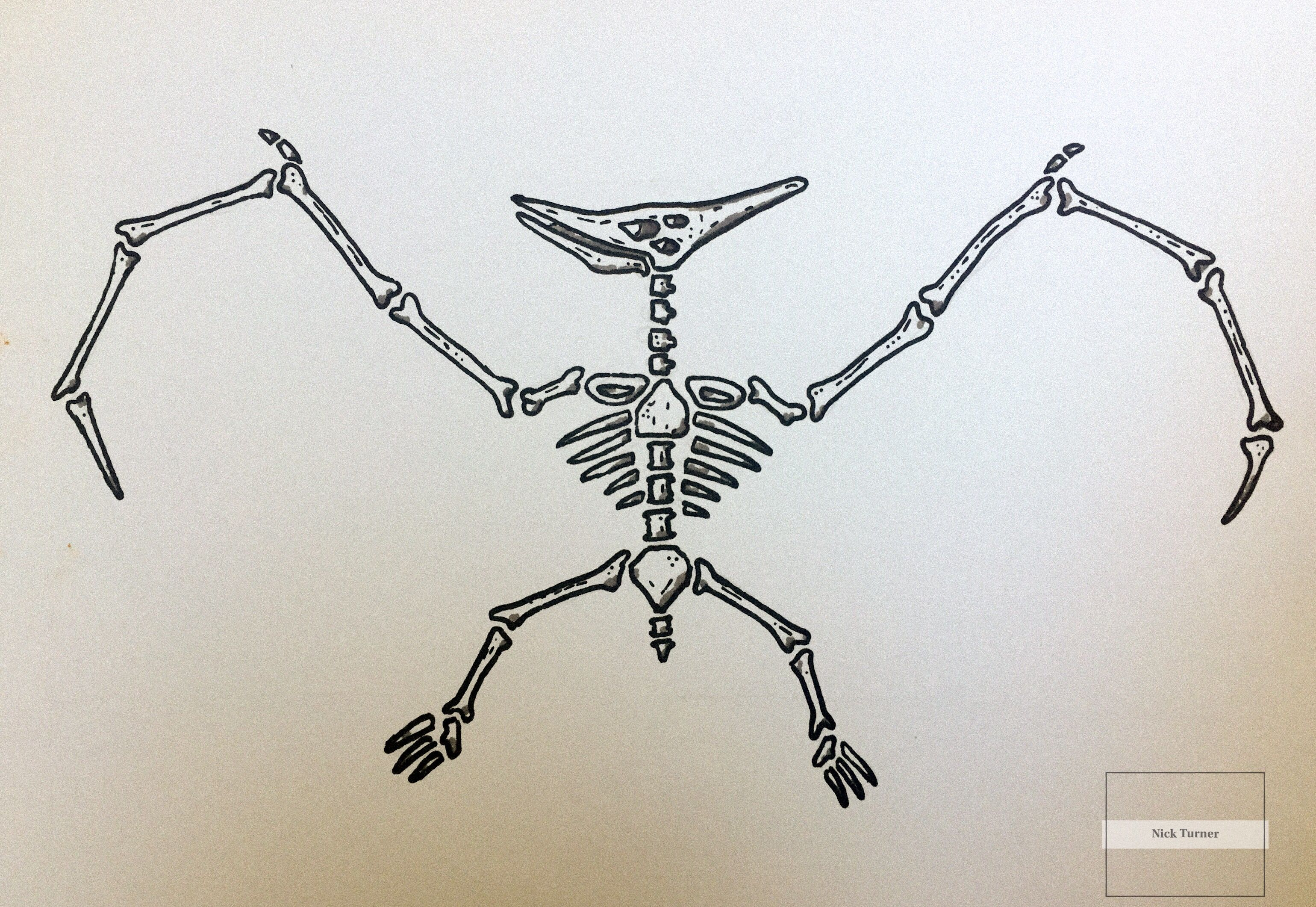 Tattoo Design Of A Pterodactyl Skeleton Tatuajes