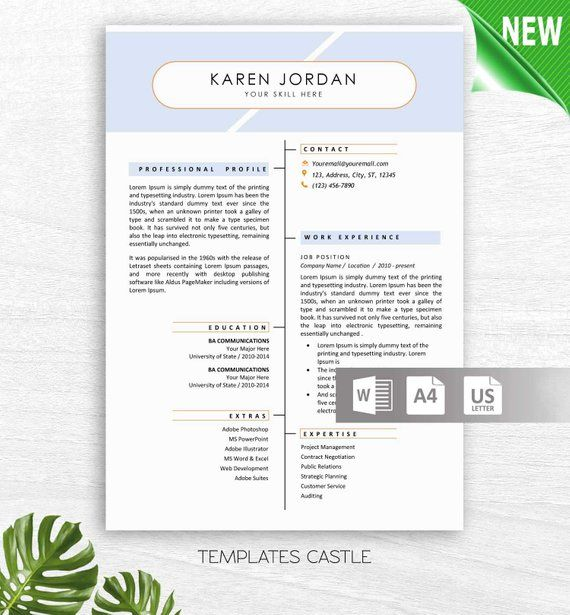 Professional Resume Template, CV Template for MS Word, Creative