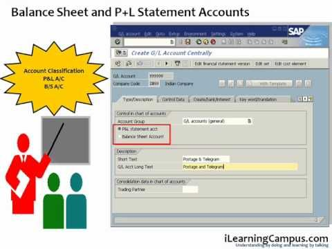Chapter 9 SAP ERP FICO General Ledger Master Account - Overview