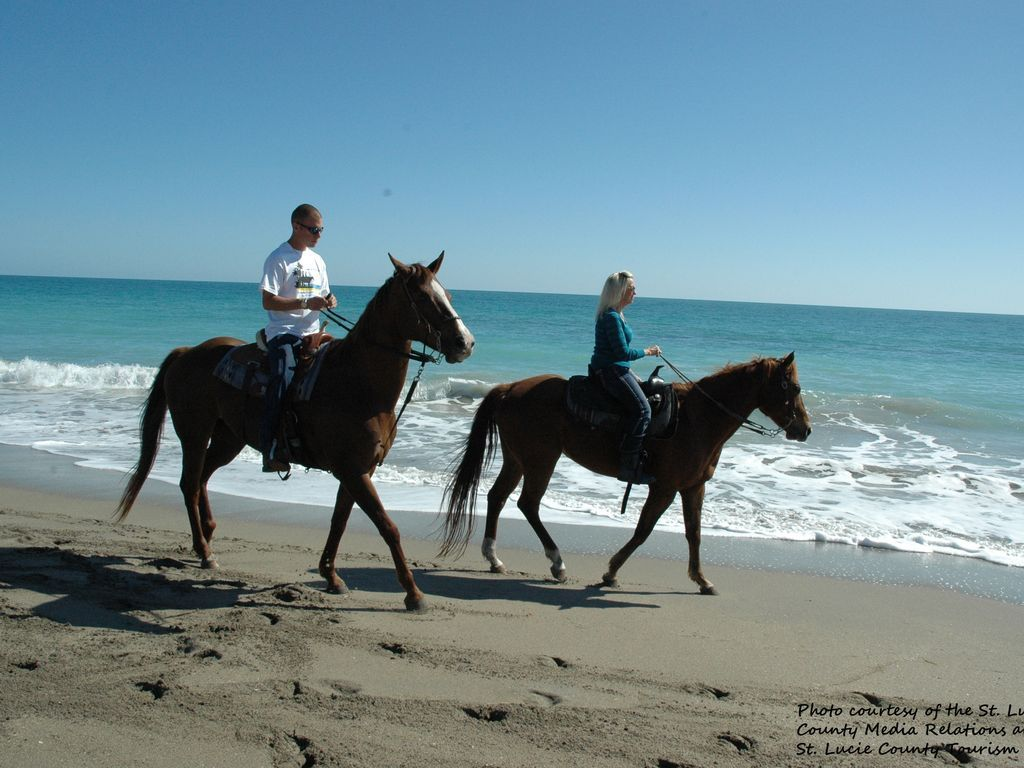 Horse Back Riding On The Beach At Hutchinson Island