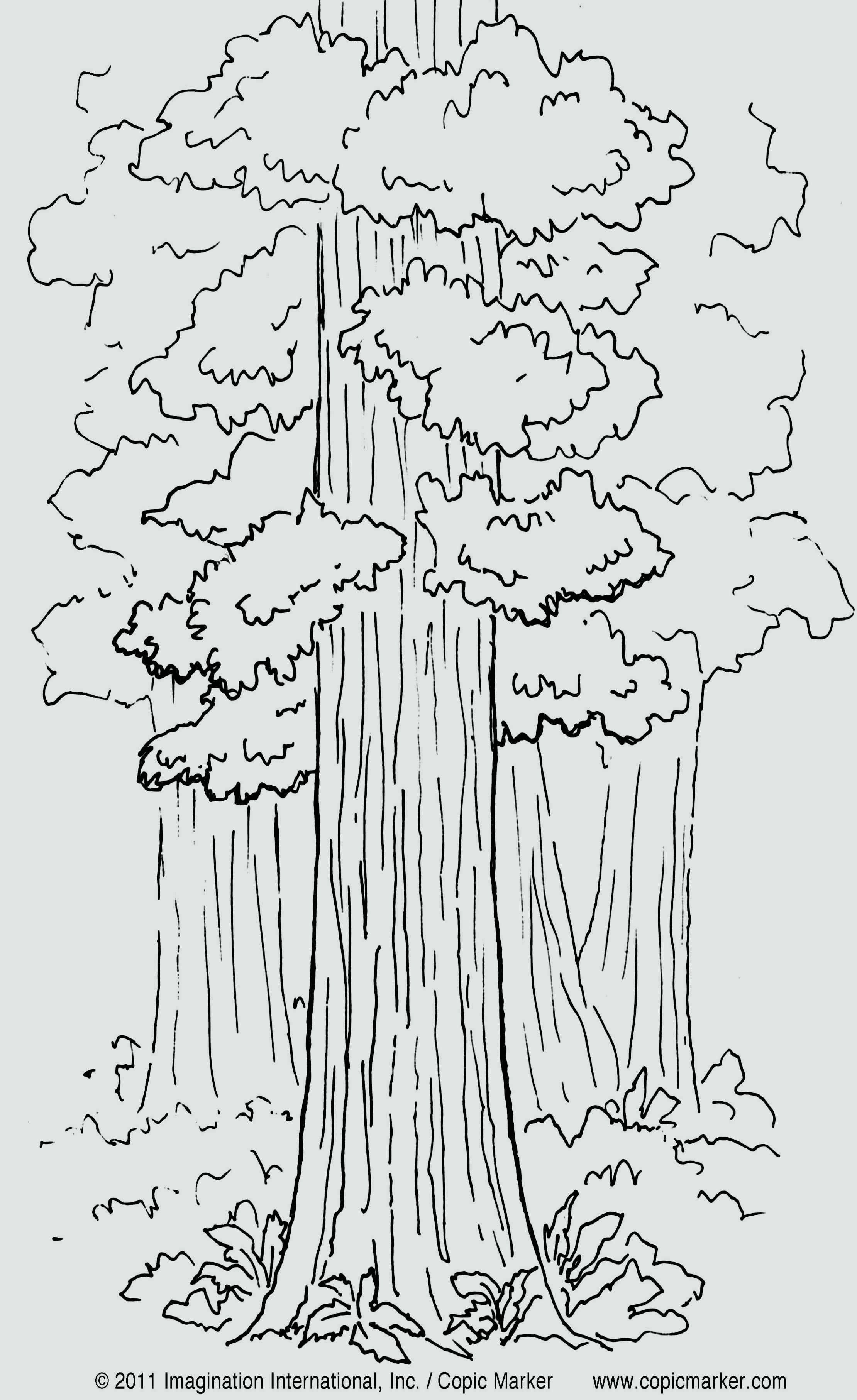 Coloring Page Tree Without Leaves