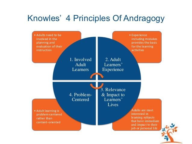 learning theory adult Knowles