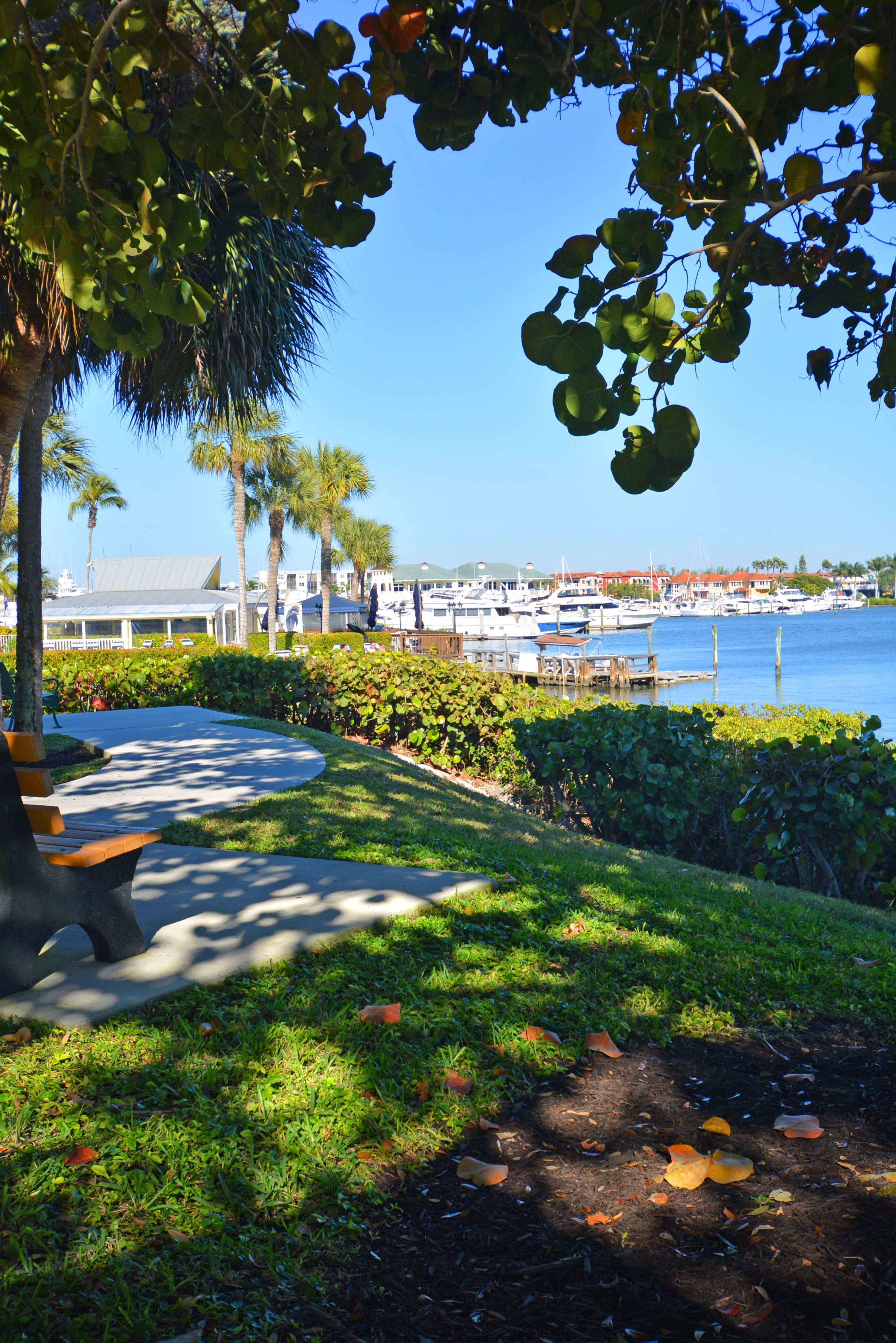 overlooking naples bay in naples fl a peaceful place to sit and rh pinterest com  what to do in naples fl for a day