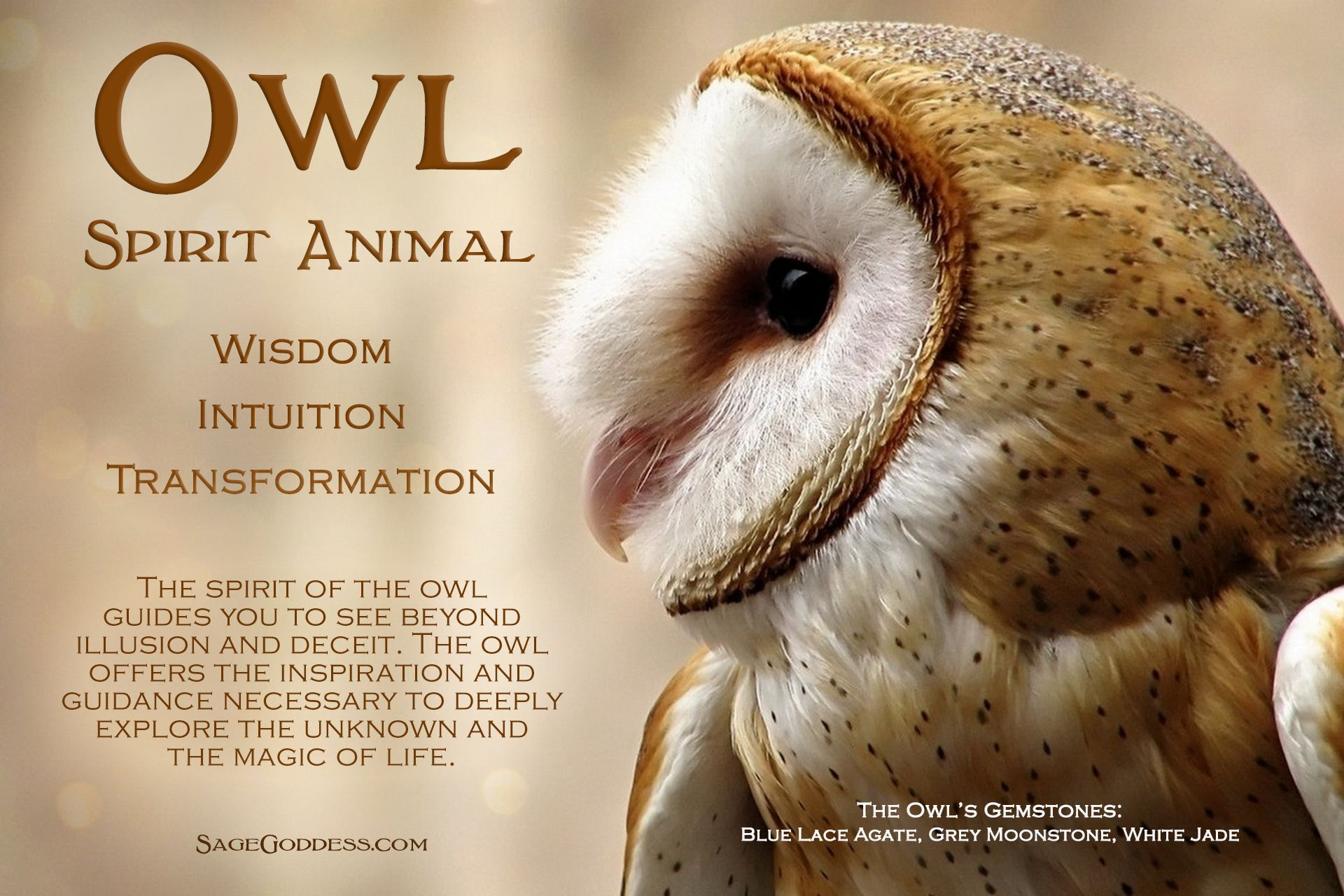 Spirit Guides Are Powerful Movers And Shapers Of The Journey Within To The Other World Are Owl Spirit Animal Spirit Animal Totem Animal Totem Spirit Guides