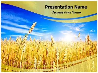 Wheat Field Powerpoint Template is one of the best