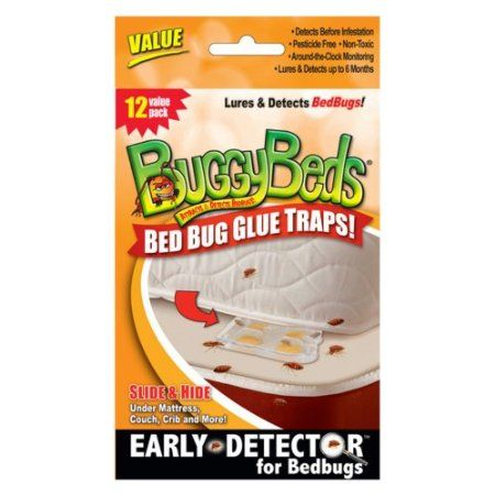 Amazon Com Bed Bug Trap Buggybeds Value Pack Of Glue Traps 12