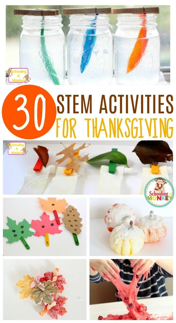 20 Brilliant Fall STEM Activities for Elementary
