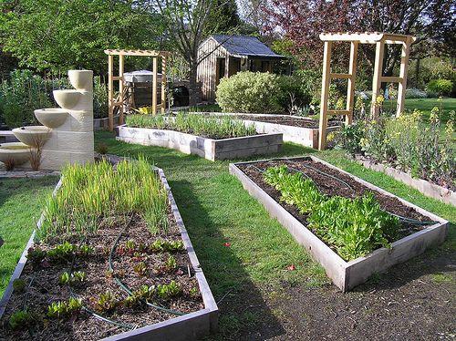 Vegetable garden and orchard design built2 | Vegetable ...