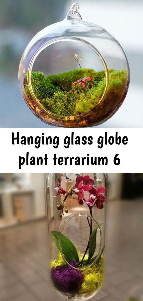 Hanging glass globe plant terrarium 6