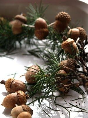 (via Merry Winter Wonderland❅❉)  Acorn and evergreen garland