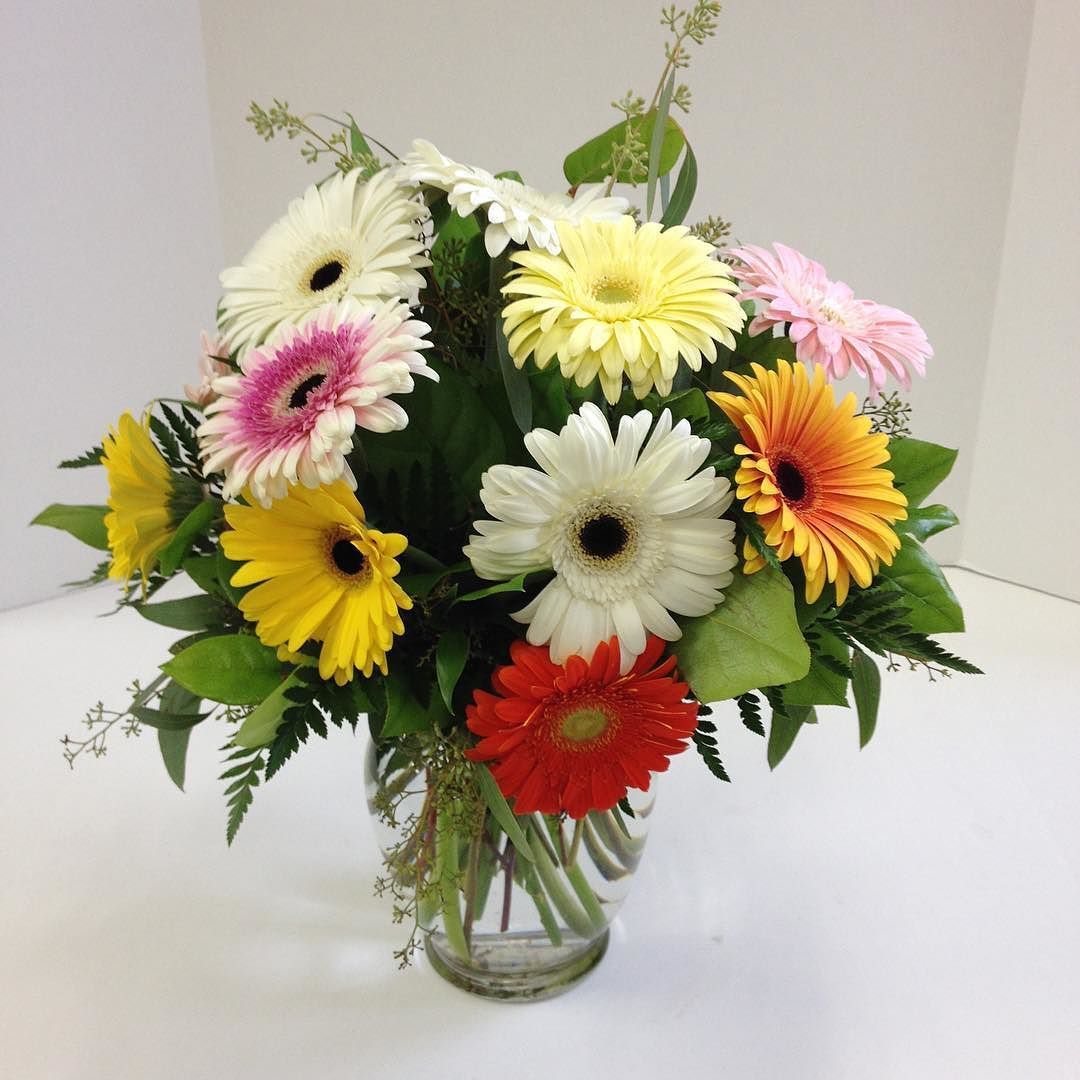 Gerbera Just Another Colorful Day At Brant Florist Pinterest