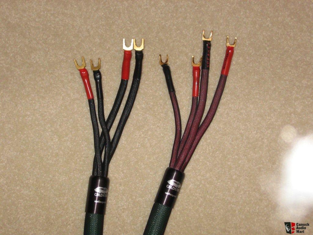 audioquest-caldera-speaker-cables-bi-wire-2-5-meters-photo-452517 ...