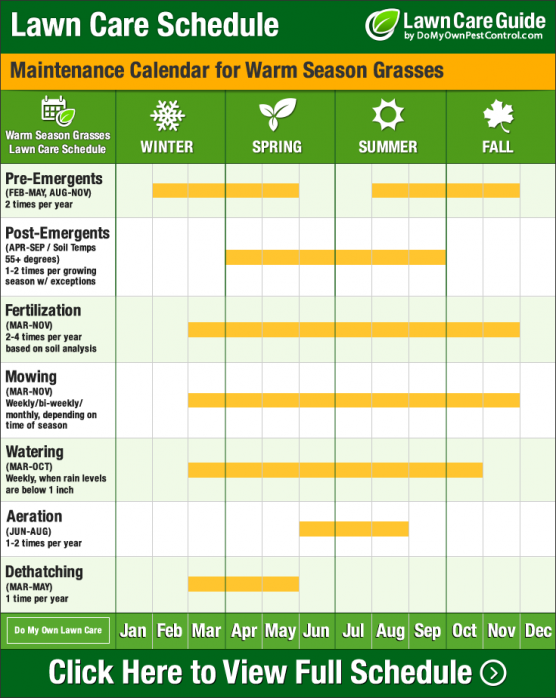 DIY Lawn Care Calendar & Maintenance Schedule For Warm Season Grasses