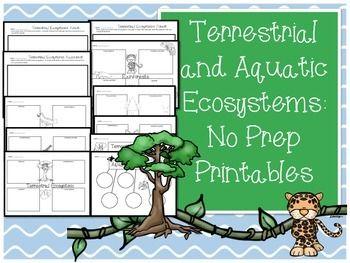 Worksheets On Terrestrial And Aquatic Ecosystems Aquatic Ecosystem