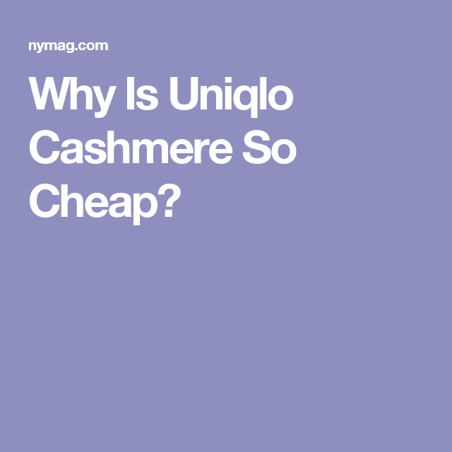 5c5bf32fa04 Why Is Uniqlo Cashmere So Cheap Yet So Great