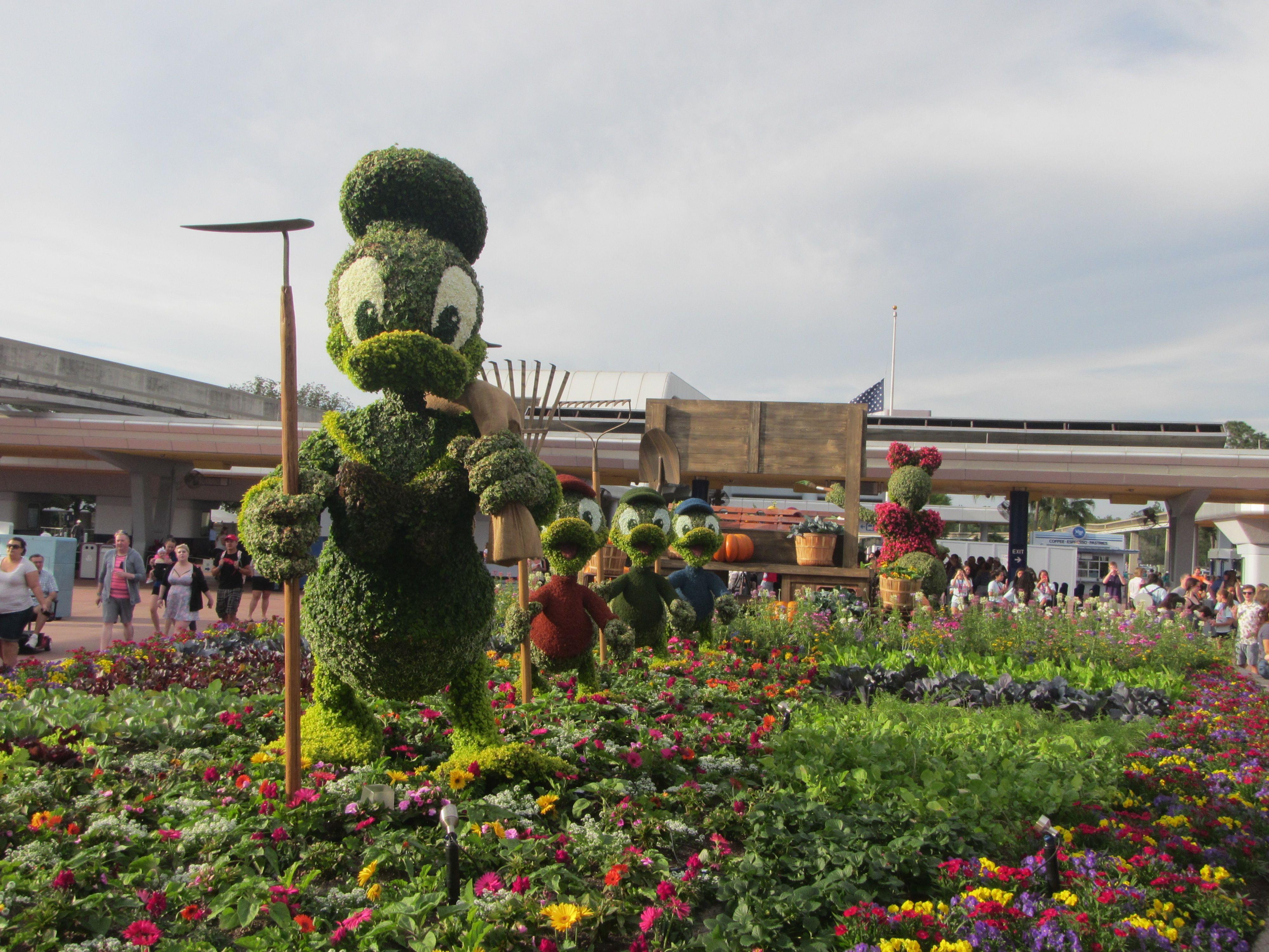 Garden festival at Disney World's Epcot center with Donald Duck greenery:  https://www.roxbeachweddings.com/honeymoon-destination-reviews/honeymoon-destination-review/