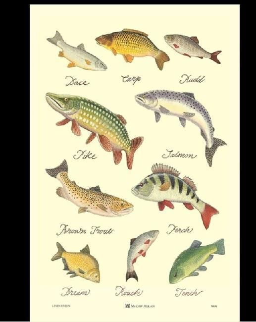 A4//A3 Poster Pike Vintage Fishing Poster