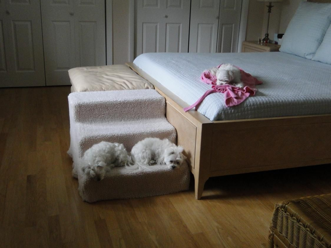 Dog Stairs For Bed Plans   Http://www.sbadventures.com/
