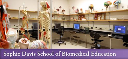 Sophie Davis School Of Biomedical Education Science Pinterest