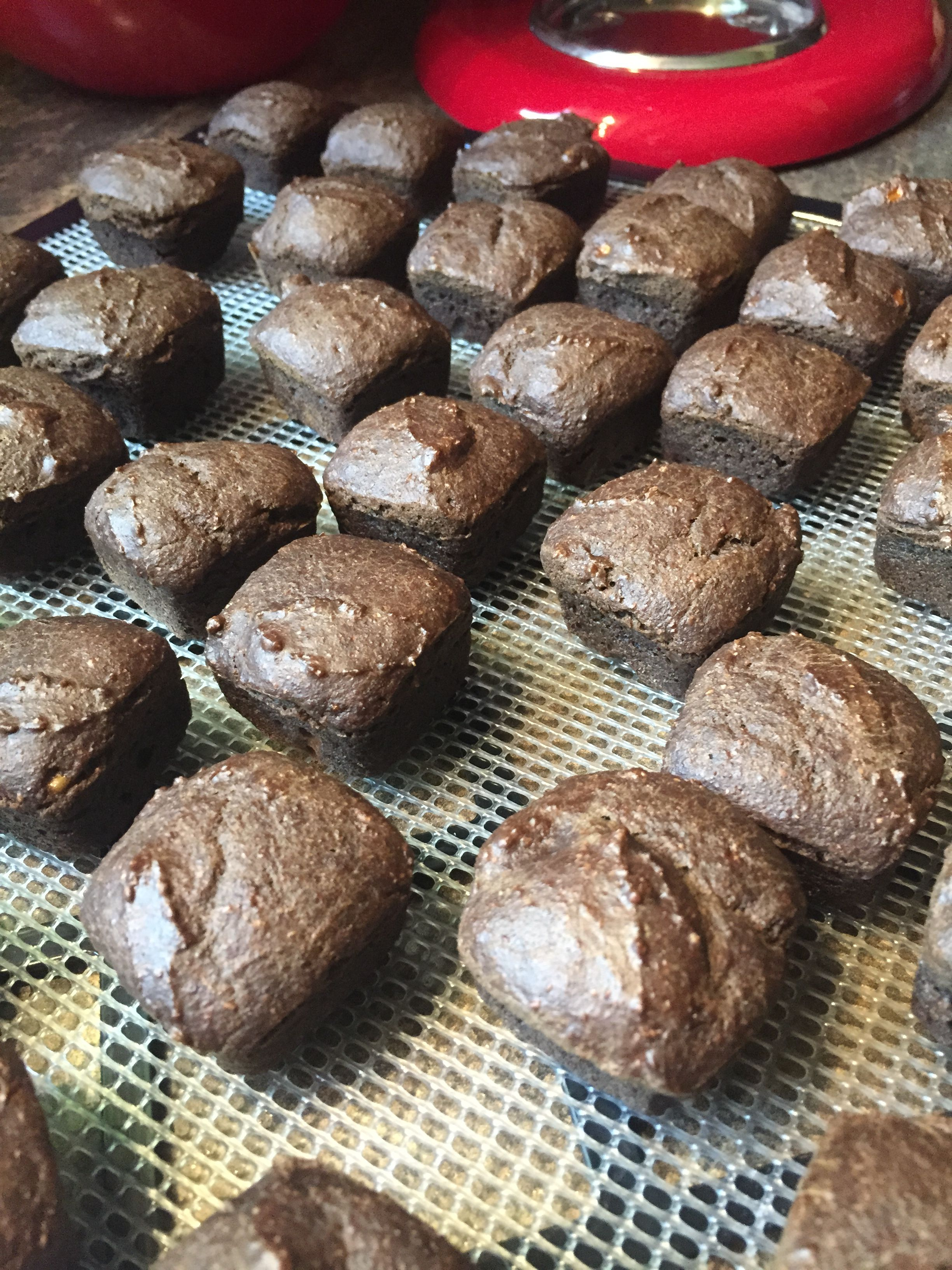 Baking FRENZY continues at the Barkery as the undecorated Peanut Butter Banana Brown Doggie Brownies go in the dehydrator!