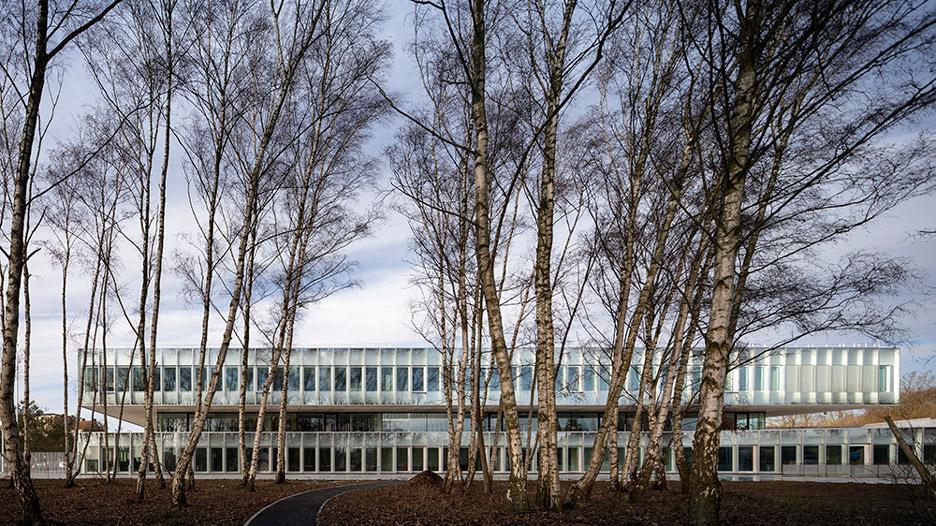 A Stack Of Low Glazed Forms House The Eurartisanat Chambre De Metiers Et De L Artisanat Des Hauts De Franc In Lille France In 2020 Lille Glass Facades Building Costs