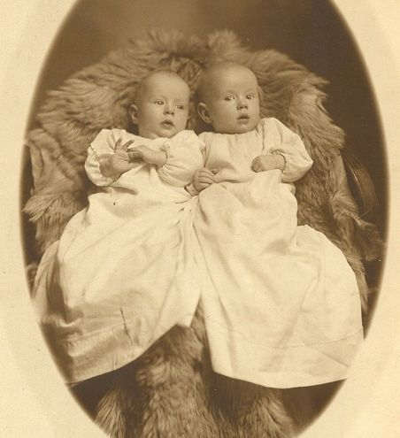 Adorable Vintage Photo of Baby Twins on Bearskin