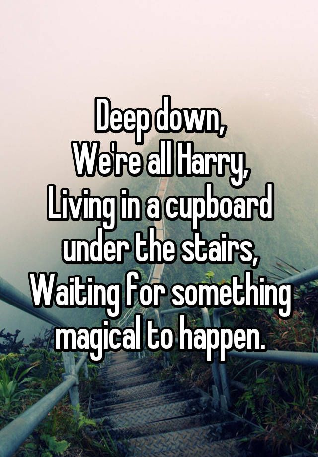 Deep Down We Re All Harry Living In A Cupboard Under The Stairs Waiting For Something Mag Harry Potter Obsession Harry Potter Fandom Harry Potter Universal