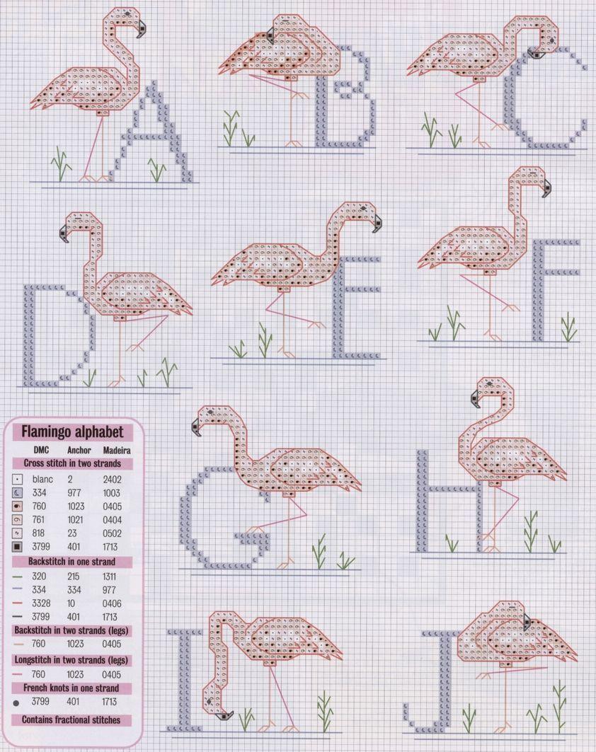 Flamingo 1 (3)