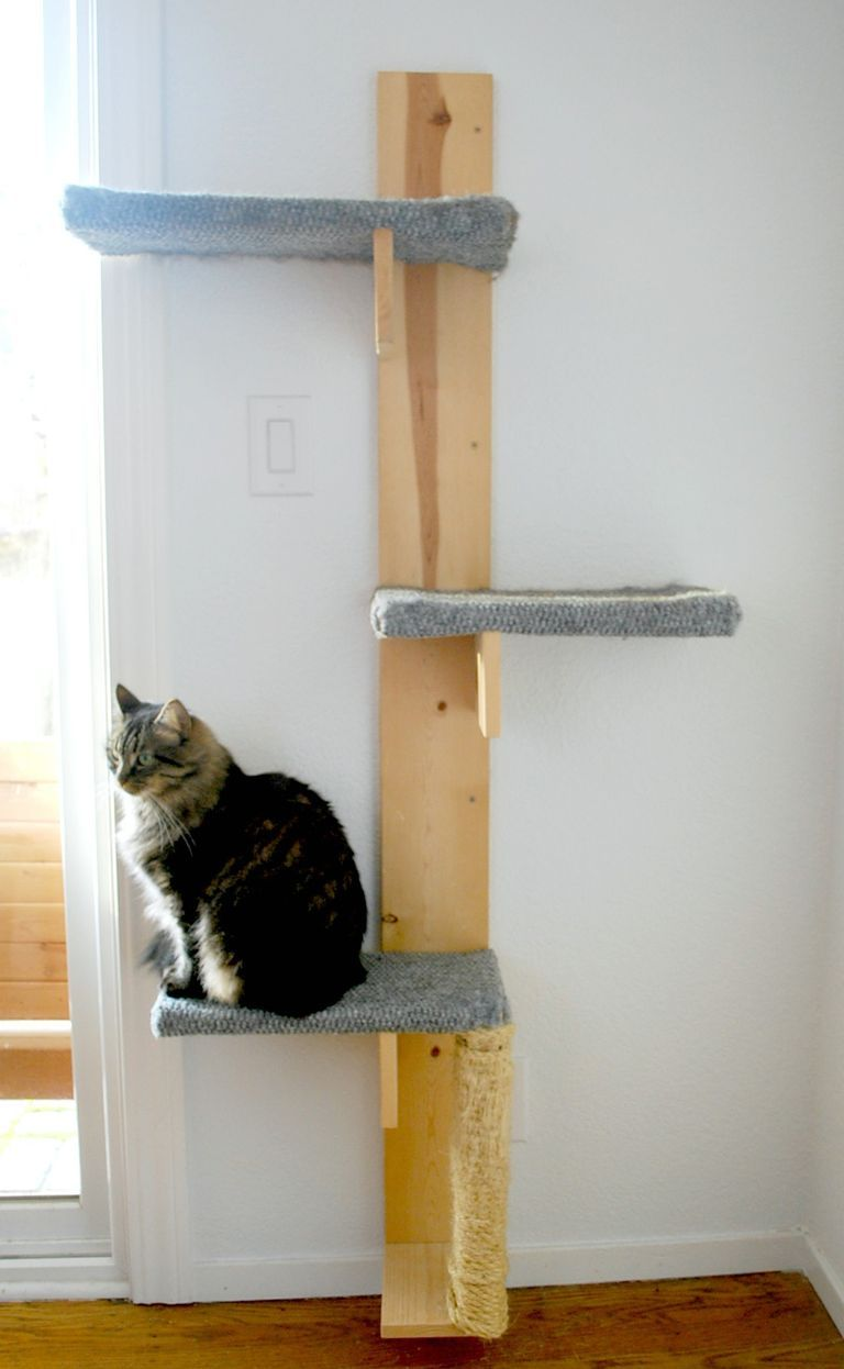 Build a cat tree with these free plans animals pinterest cat