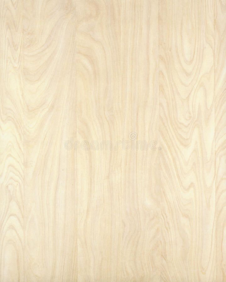 Wood Texture Background Birch_10 Stock Image - Image of hardwood, background: 14001213