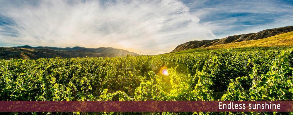 Kamloops Wine Trail in Kamloops, BC, Canada