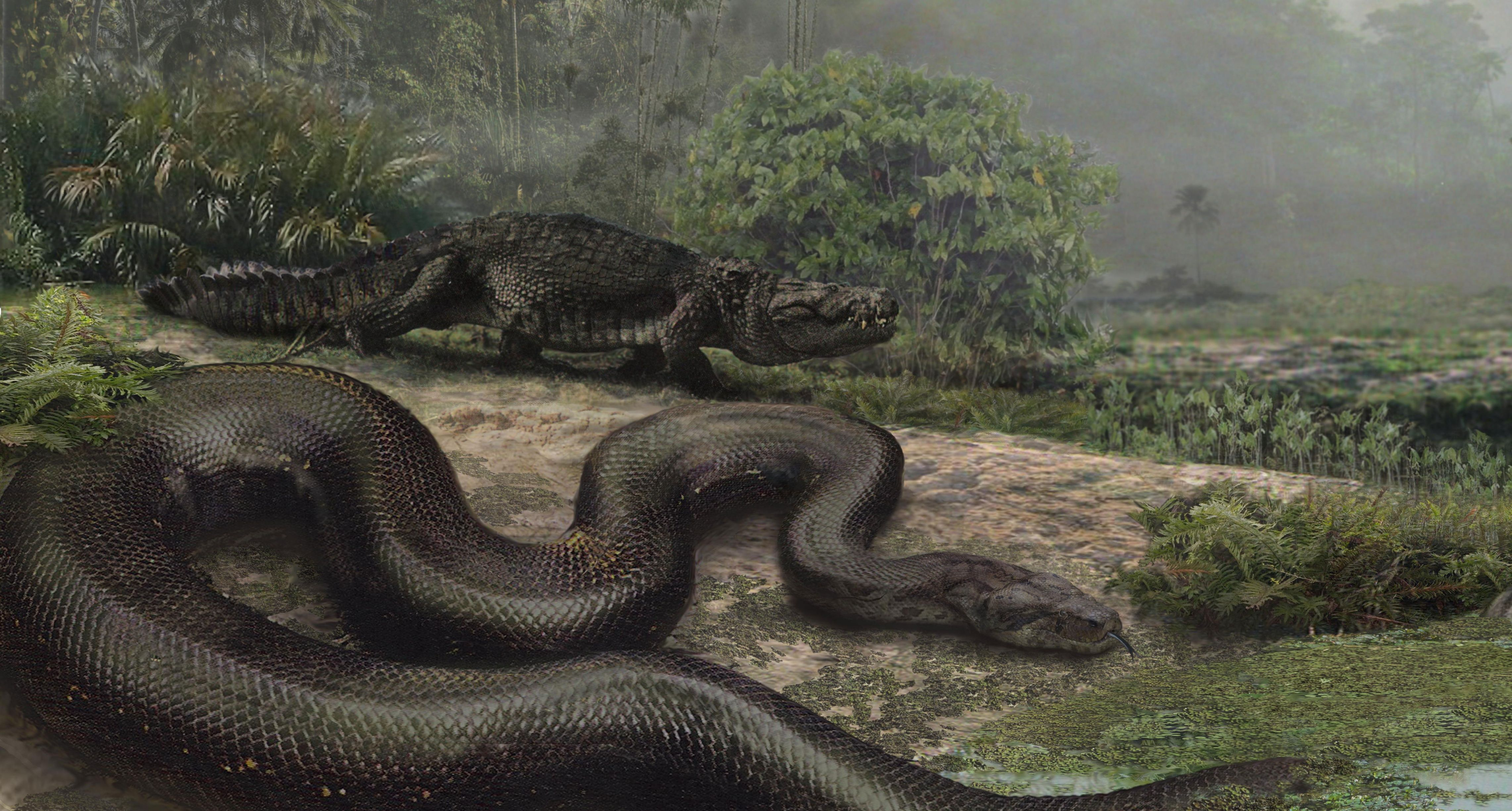 What's the largest snake that has ever existed?