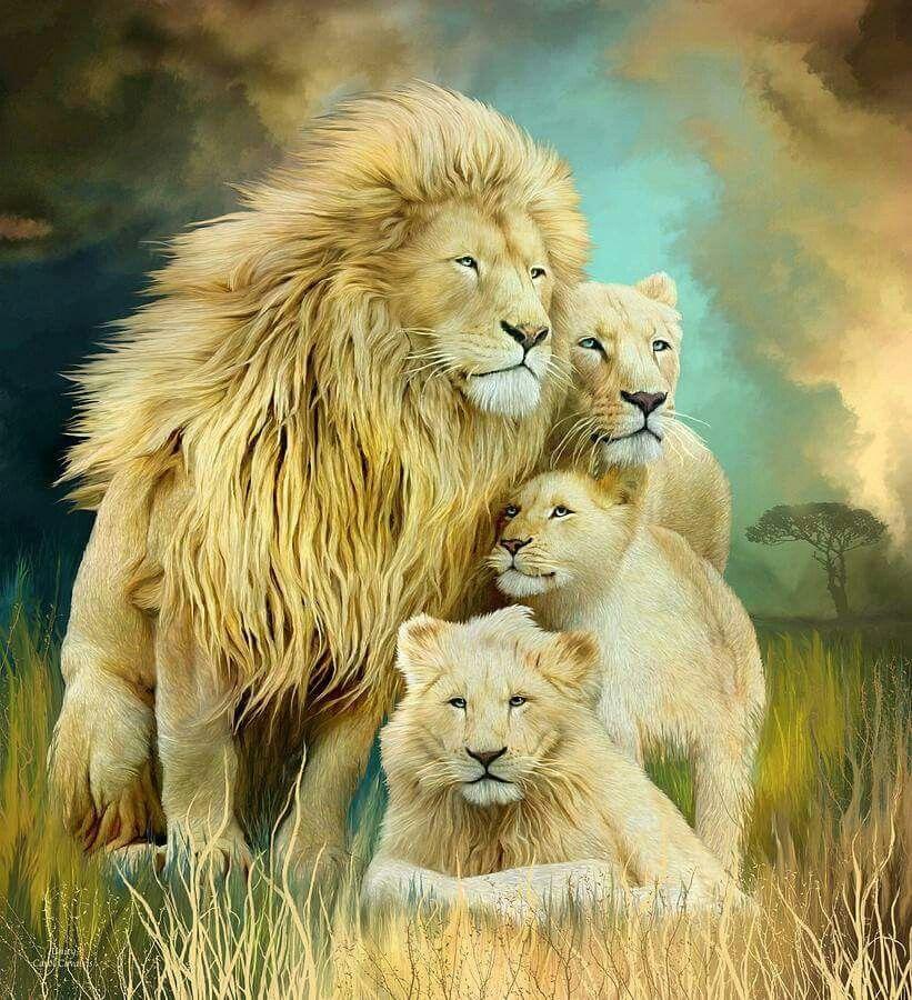 гану картины со львами фото сыграет главную