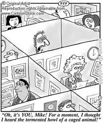 used office cubicles in columbus, ohio. #cubicle #office #funny