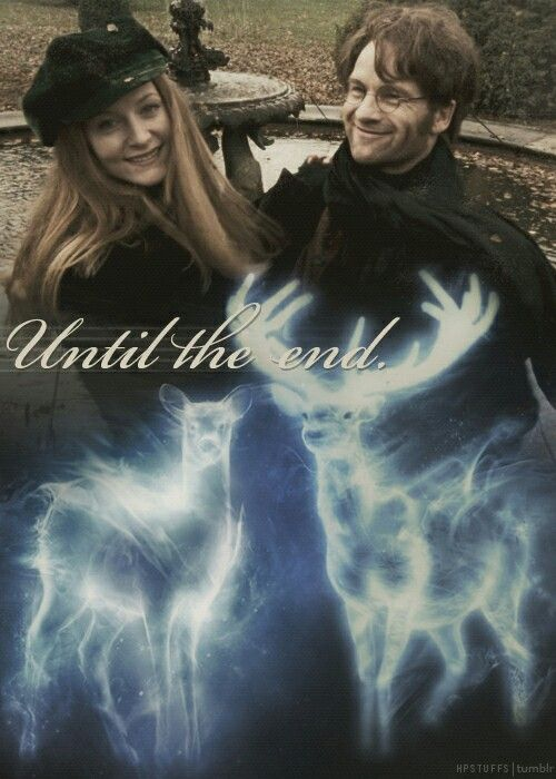 I Ship Jily So Much 31rd October R I P James And Lily Potter Hogwarts Kino Film Harry Potter Zitate