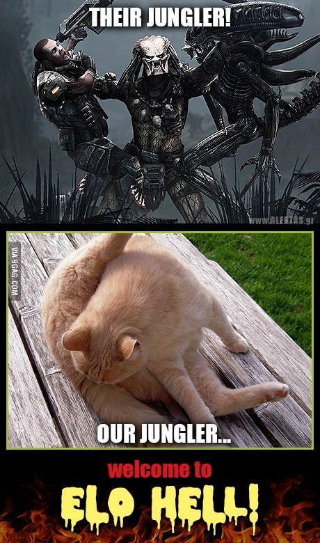 League Of Legends Jungler League Of Legends Memes Lol League Of Legends League Of Legends