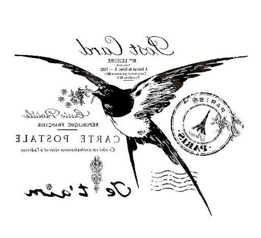 TRANSFER- 5 - vigorut - Álbumes web de Picasa