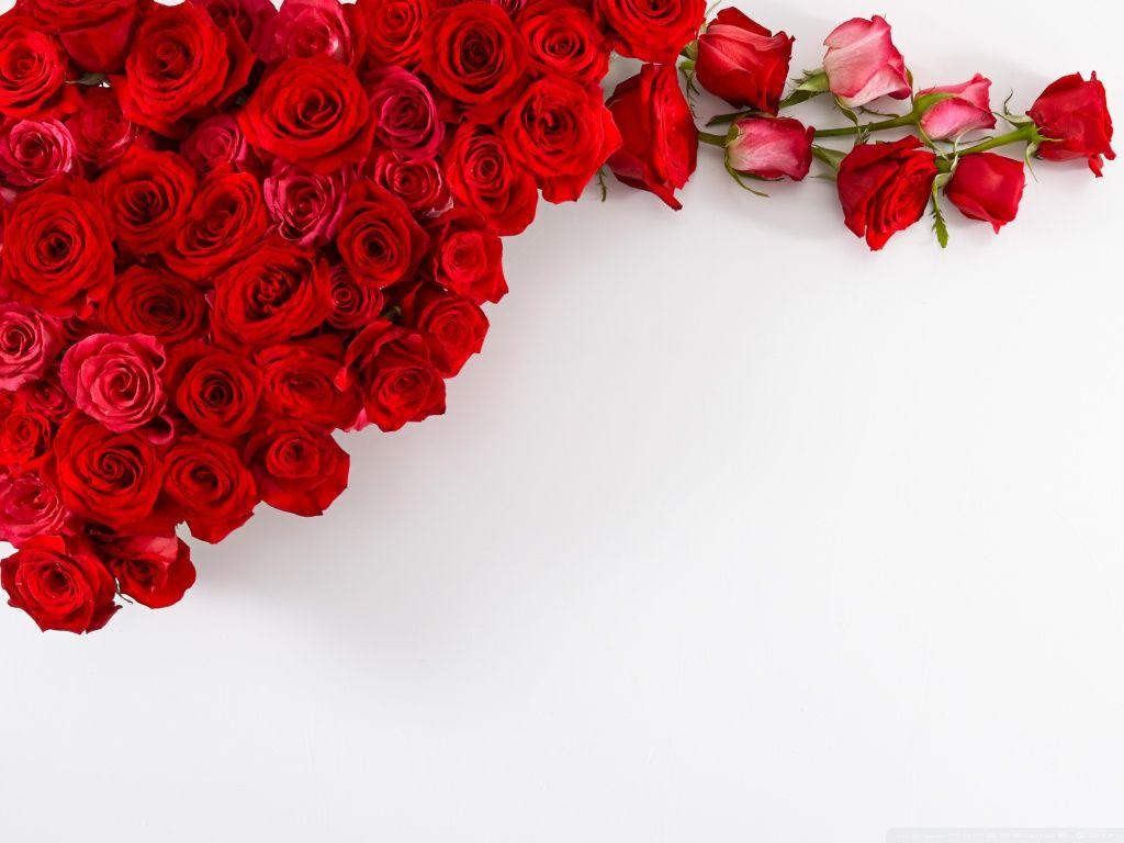 Red rose heart wallpapers wallpaper hd wallpapers pinterest