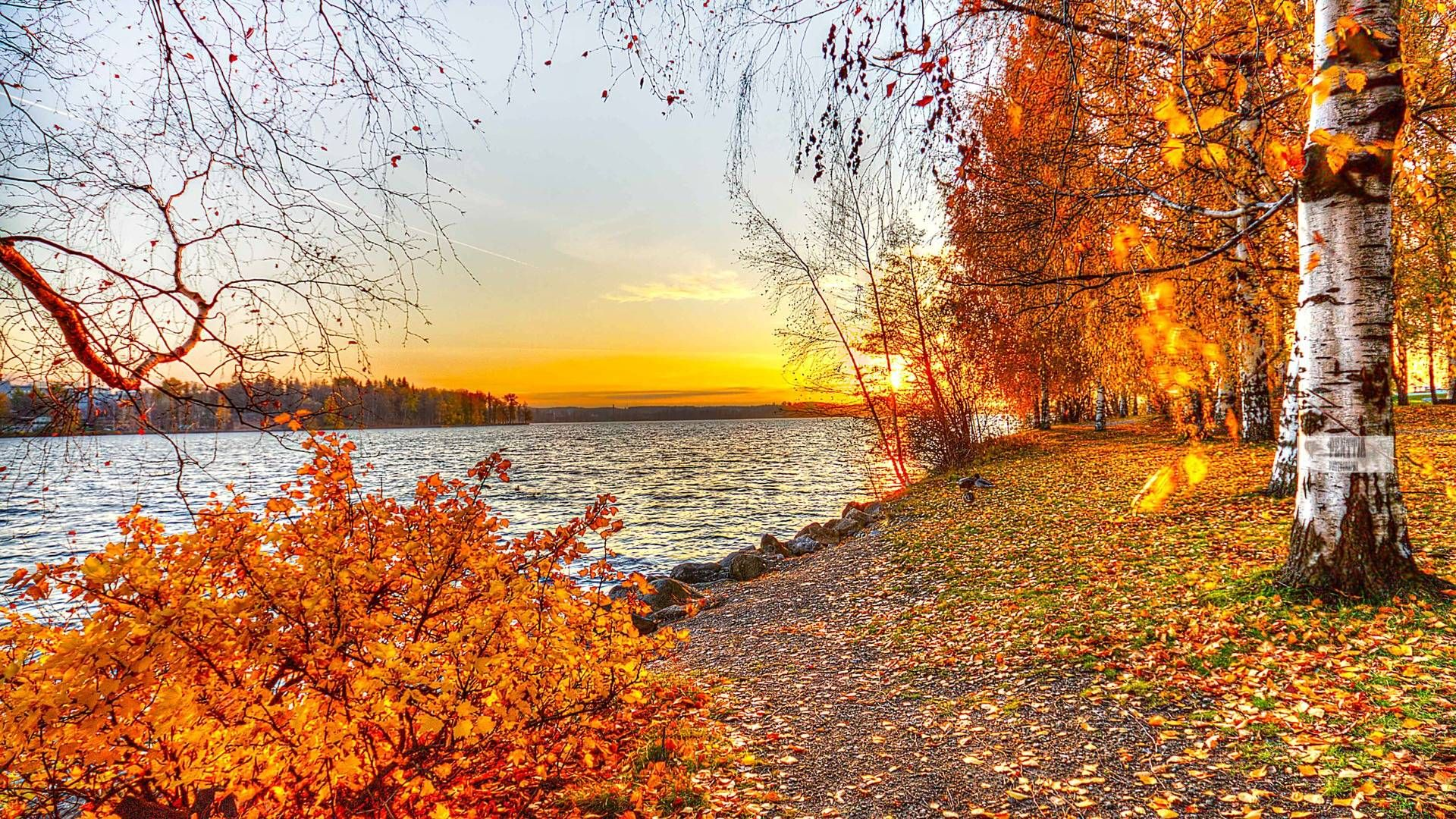 Autumn Landscape wallpaper 819446 Desktop wallpaper