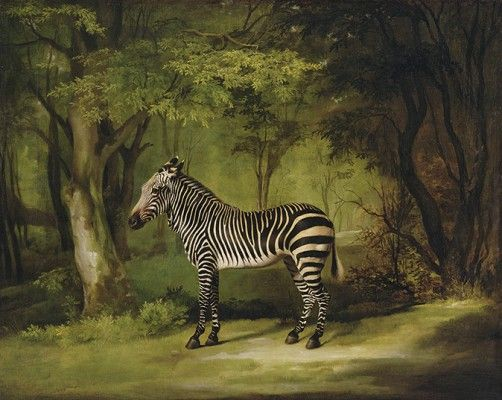 My favourite painting Amy Meyers (With images) Zebra