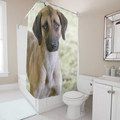 Puppy Dog Eyes Shower Curtain Zazzle Com Puppy Dog Eyes Dogs